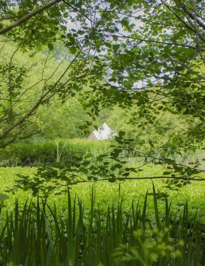 Biodiversity -Best Ecco friendly Spot in UK