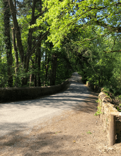 Owl Valley Glamping road