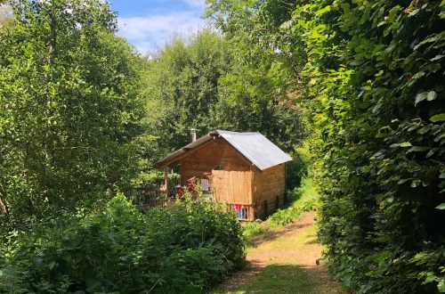 Cabin In Nature, Owl Valley Glamping